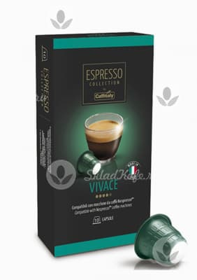 Капсулы Caffitaly Vivace 10 шт